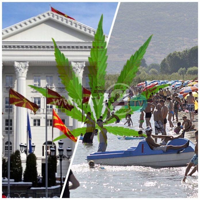Владата ќе ја легализира марихуаната