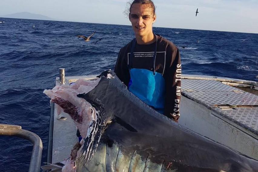 Сакал да улови помала ајкула, но извлекол ѕвер: Сите во шок, се поставува само едно прашање