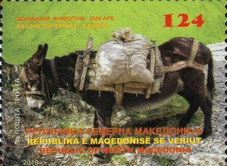 Магаре на првата поштенска марка на Северна (двојазична) Македонија: Што сакаат да ни порачаат? (ФОТО)