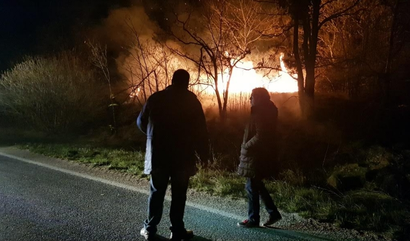 Локализиран пожарот во битолско по масовна интервенција