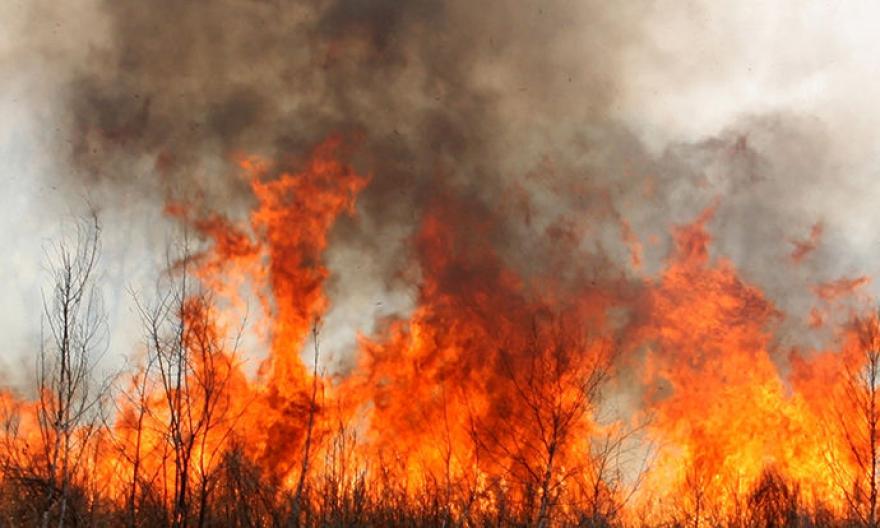 Четири пожари беснеат во Кавадаречко