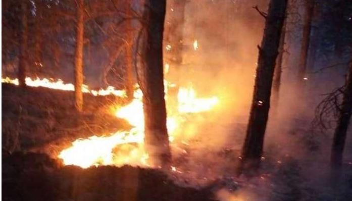 Две куќи изгореле во струшко, пожари беснеаат низ цела Македонија