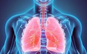 Лани во Македонија: 13 лица починале од туберколоза, заболени 217
