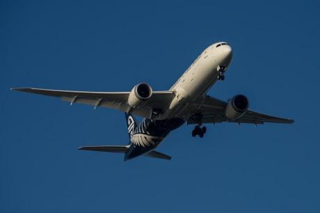 ФОТО: Драма на небото- авион принудно слетал, бидејќи удрил во јато гуски