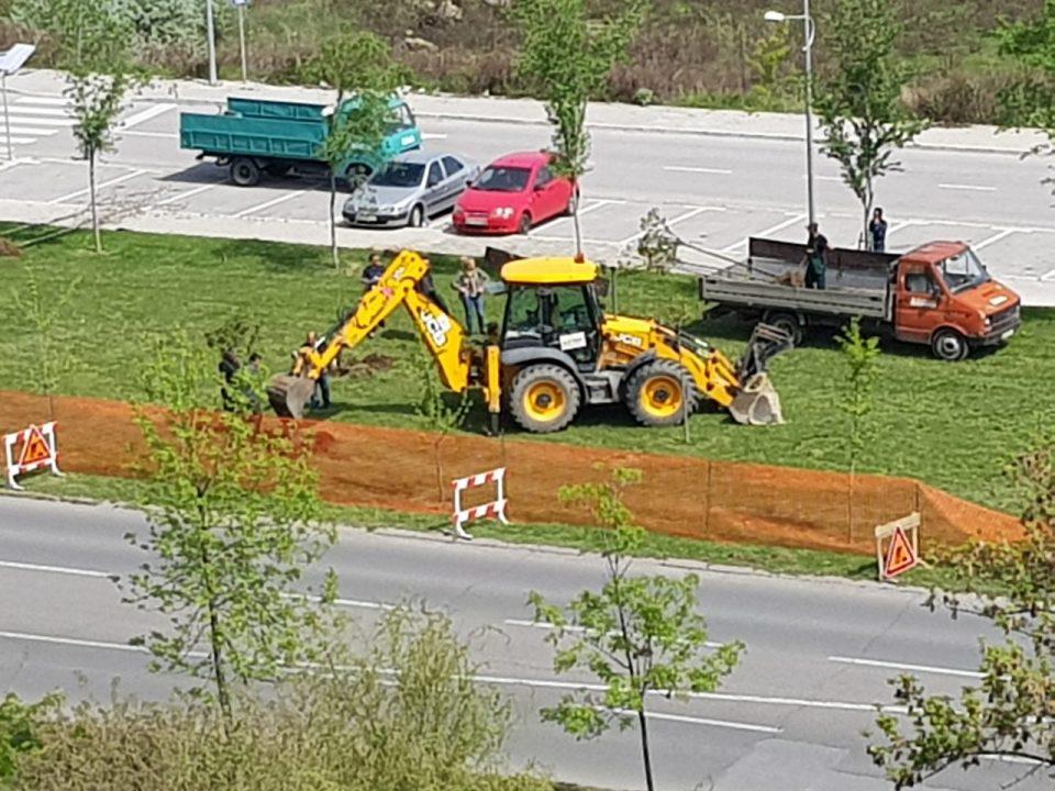 Есента ги посадија, сега со багери ги корнат- дрвата во Аеродром му го нарушуваат погледот на Заев додека седи во луксузниот хотел (ФОТО)