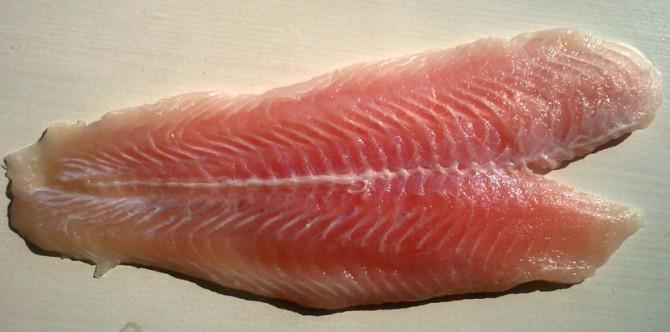 Секојдневно ја купуваме, а опасна е по здравјето: Не ја јадете оваа риба