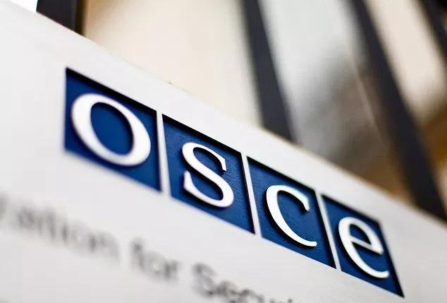 ОБСЕ со 50 набљудувачи за претседателските избори во земјава