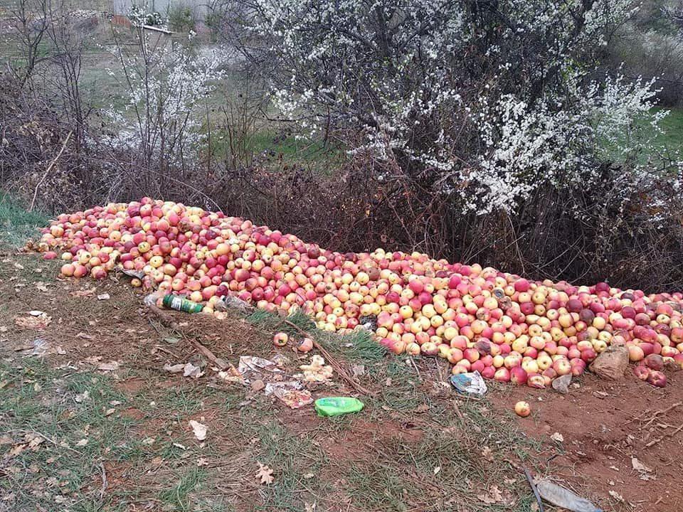 Тажна слика од Преспа: Јаболката завршија покрај патот (ФОТО)