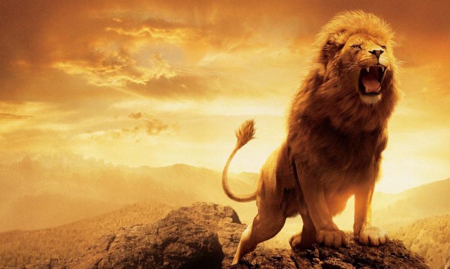 12 причини зошто ниту еден хороскопски знак не може да се рамни со Лавот