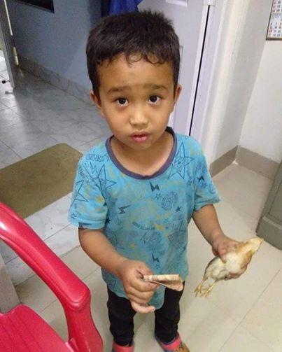 Потег кој го воодушеви светот: Момче прегазило пиле на сосед па го однело во брза помош