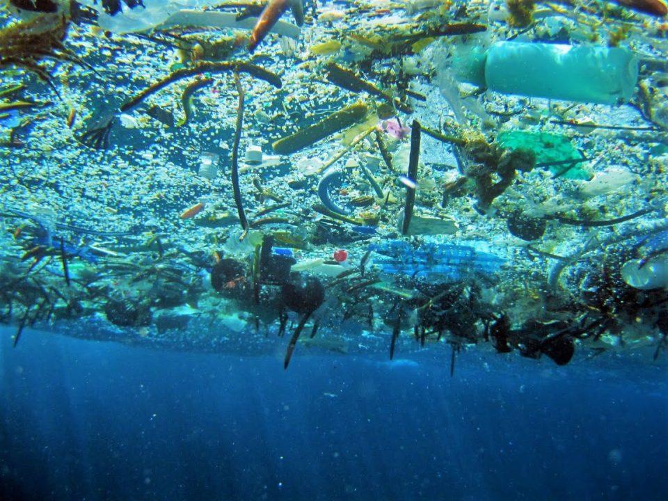 До 2050 во морињата ќе има повеќе пластика отколку риби!