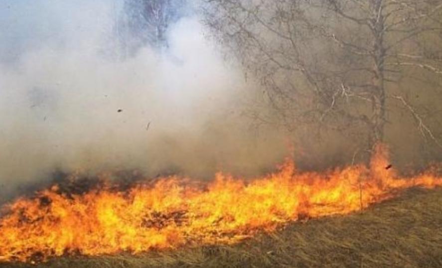 ДЗС: Вклучени сме во гаснење на пожарот во депонијата Русино