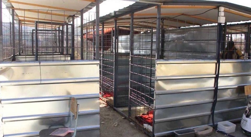 "Штипскиот стационар затворен поради топлотни удари на животните, ""Анима мунди"" бара кривична одговорност"