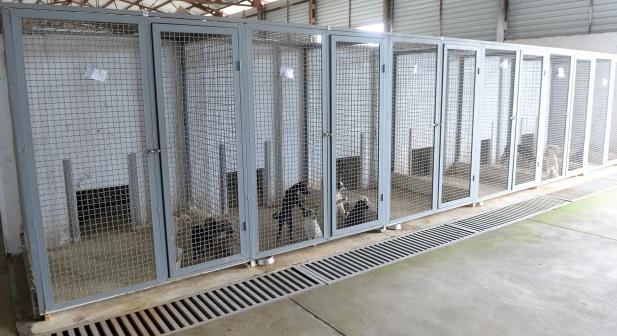"""Агенцијата за храна и ветеринарство го затвори стационарот """"Вардариште"""""""