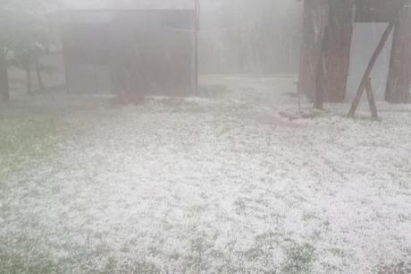Врнежи од град во Македонија- предизвикани мали штети