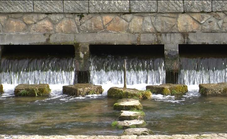 Фекални бактерии во водите на Билјанини извори!