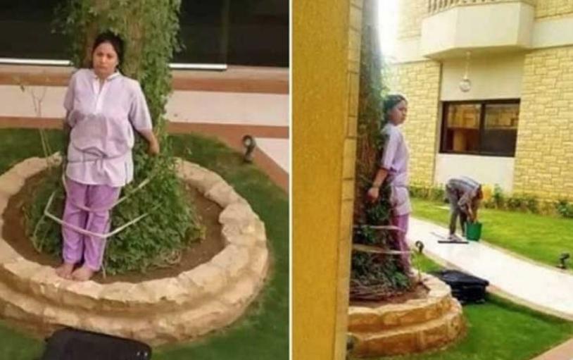 Газда од пеколот: Ја врзал за дрво жената која му го чисти домот, причината е уште пошокантна (ФОТО)