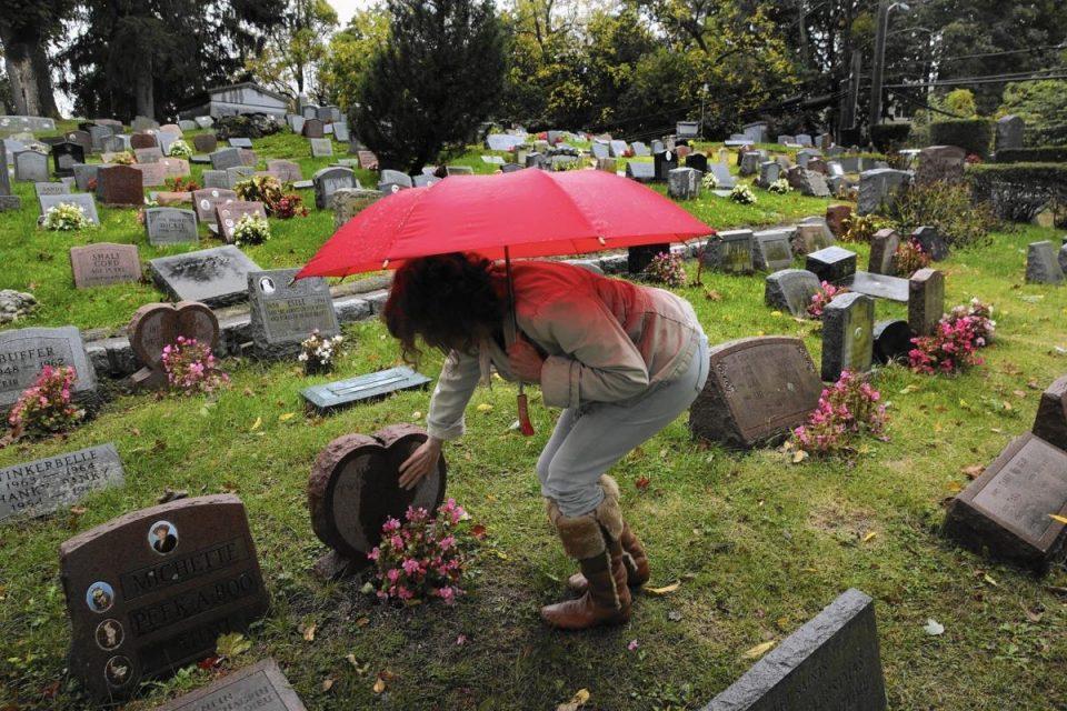 """Угинатите кучиња и мачиња уште ги закопуваме """"кому иде"""", за гробишта на миленици нема абер"""