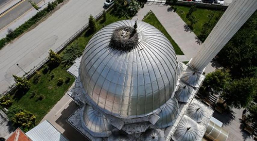 Скоро20 години штркови прават гнездо на иста џамија во Анкара