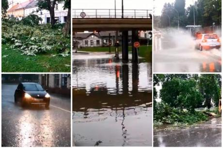 ВИДЕО: Силно невреме во регионот- ветерот искорнал дрва стари 100 години, гром удрил во куќа