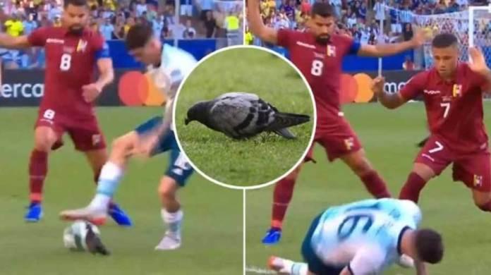 """ХИТ ВИДЕО: Аргентинец бараше прекршок од судијата, а не сфати дека беше """"фаулиран"""" од гулаб"""