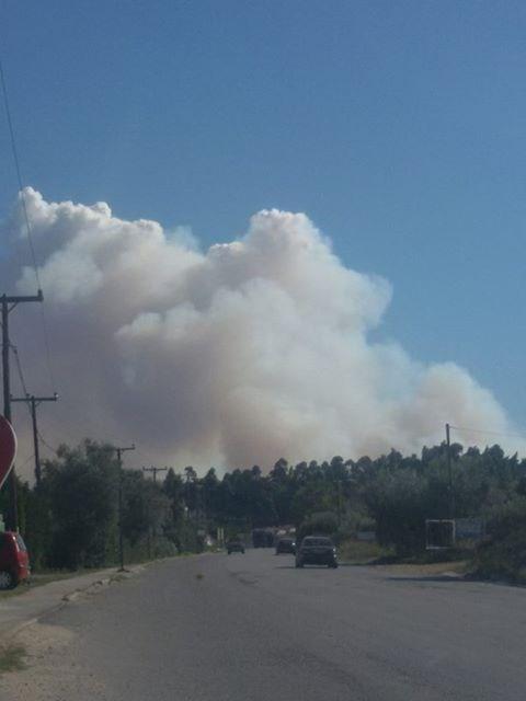 МАКЕДОНЦИ ВНИМАВАЈТЕ: Голем пожар го зафати Халкидики, огнот се шири со голема брзина!
