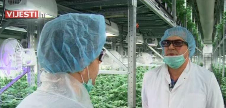 РТЛ репортажа за бизнисот со марихуана: Пријателството со Заев е голем плус во Македонија