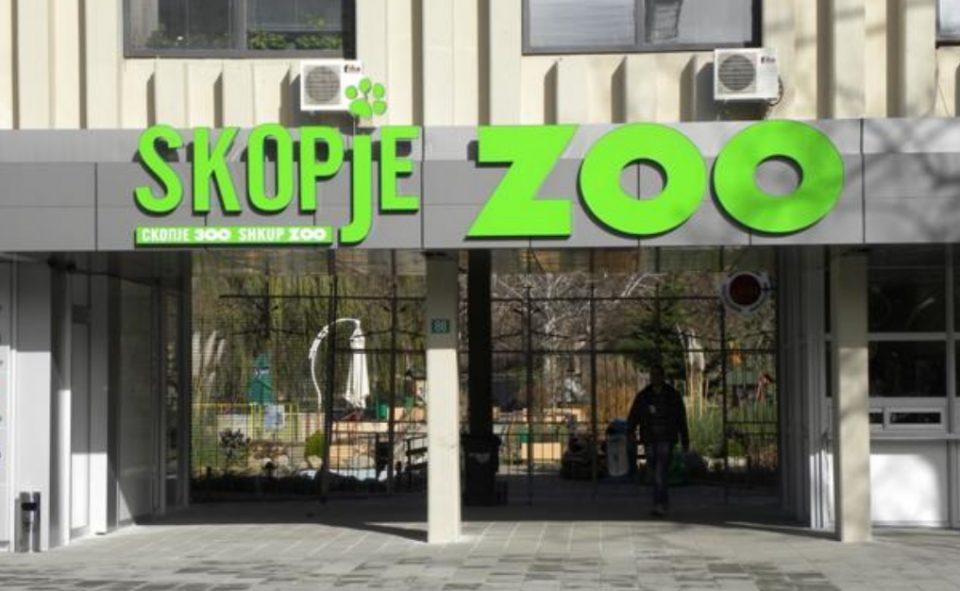 Со нов протокол за движење: Скопската зоолошка градина од денеска отворена за посетители