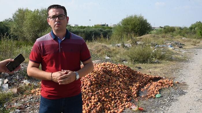 """Трипуновски: Квази мерката """"Зелена нафта"""" е фиктивна и нема реално да ги реши проблемите на македонските земјоделци"""