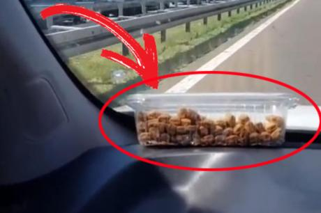 Видео од наплатна рампа во Белград: Сакаше да ја сними долгата колона, но сите гледаа во кутијата над воланот