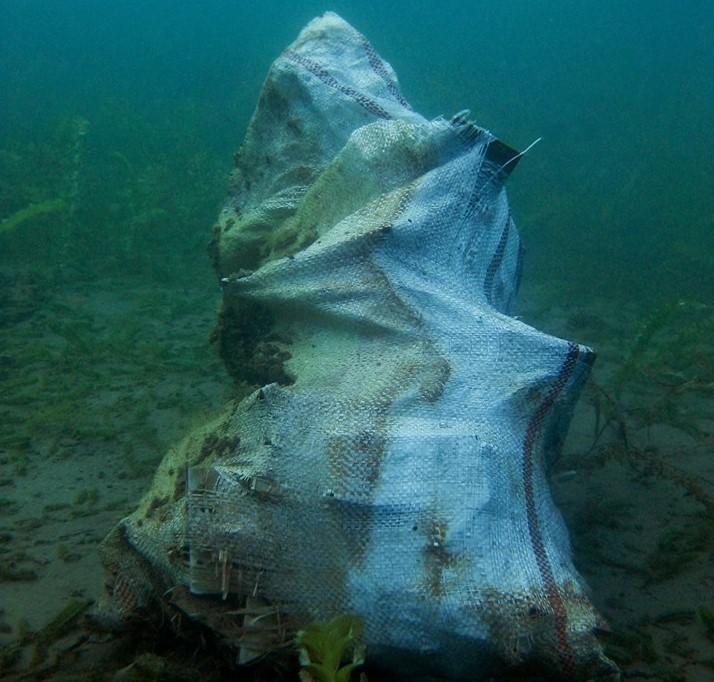 По кадата, пронајдени и плочките од реновирањето на дното на Охридско езеро