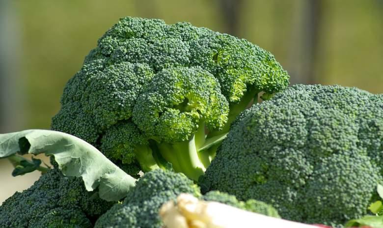 Секоја жена МОРА да јаде брокула, таа е моќно оружје против ракот на дојките