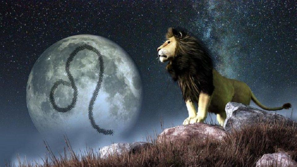 4 карактеристики поради кои Лавовите се неодоливи