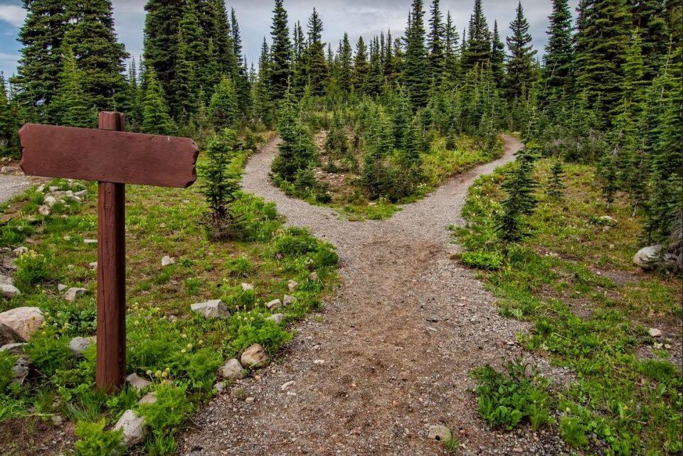 Пресметајте го бројот на вашата животна патека: Откријте што ве очекува во иднина