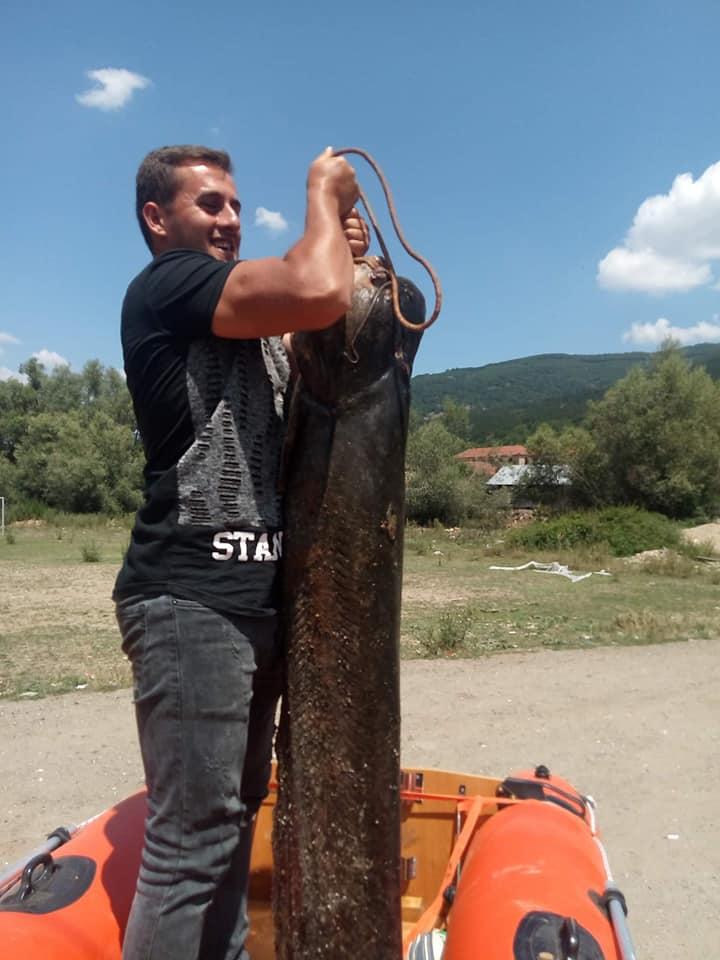 На Езерото во Стрежево риболовци уловија сом со големина од 40 килограми (ФОТО)