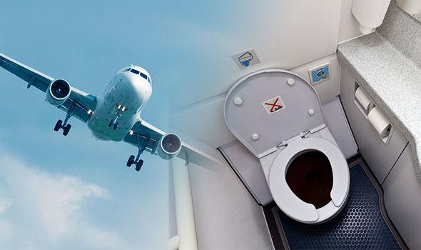 На патниците им се заледила крвта, екипажот на распит: Полицијата пронашла мумифициран фетус во тоалет на авион- еве ги деталите
