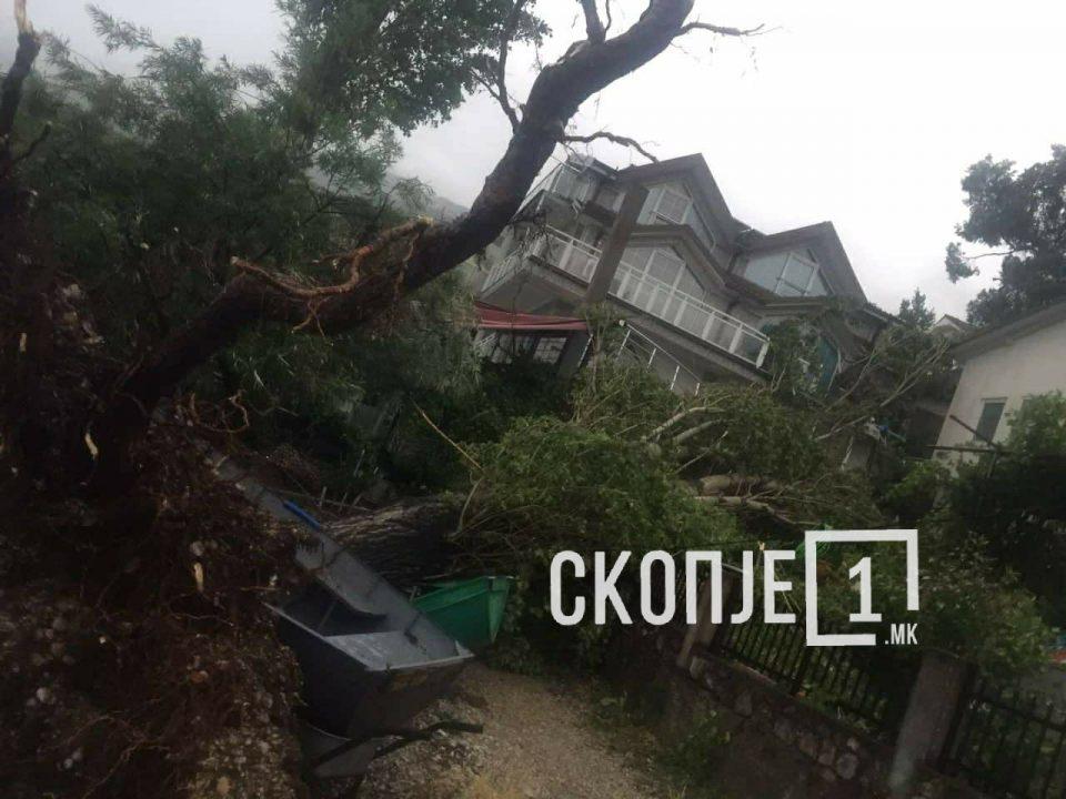 ФОТО: Големо невреме во охридско Трпејца- откорнати дрвја, искршени кајчиња…