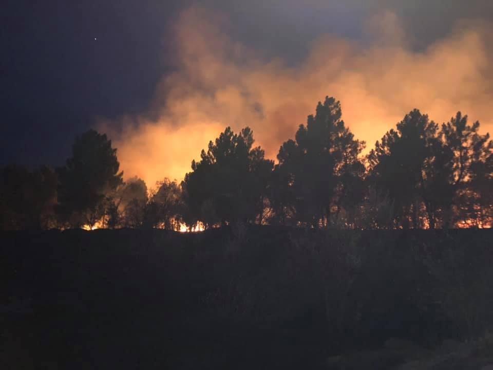 По четири часа борба локализиран пожарот во велешко