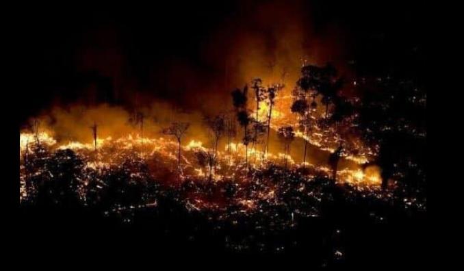 """Племето се закани, пожарот им уништи премногу: """"Белиот човек ќе зажали, Амазонија ќе се одмазди"""""""