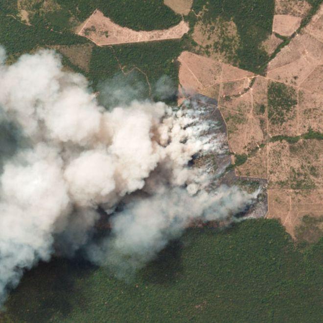 Шокантни фотографии од пожарот во Амазонија, невидена катастрофа за Земјата