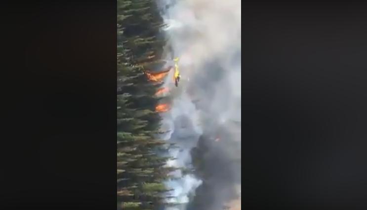 Шокантно видео: Болсонеро ги предизвикал пожарите во Амазон?