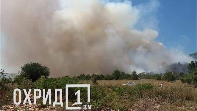ВИДЕО: Состојбата со пожарот во Дебрца станува алармантна, огнот се приближува до првите куќи
