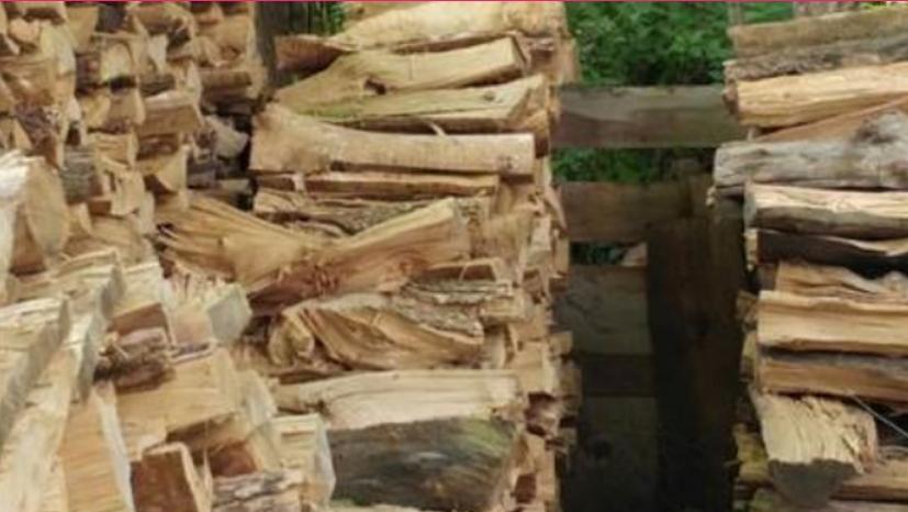 ВНИМАВАЈТЕ ДА НЕ НАСЕДНЕТЕ: Измамена и ограбена жена при продажба на огревни дрва- еве ги деталите
