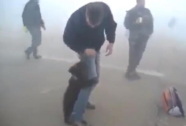 Мече спасено од пожарите во Сибир не престанува да го гушка човекот што го спасил (ВИДЕО)
