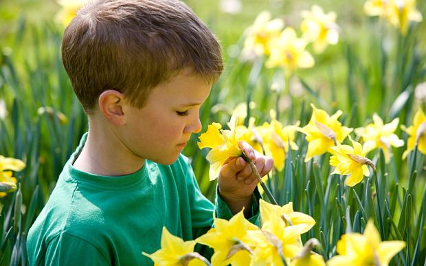 Тестот за мирис помага во откривање на аутизам кај деца