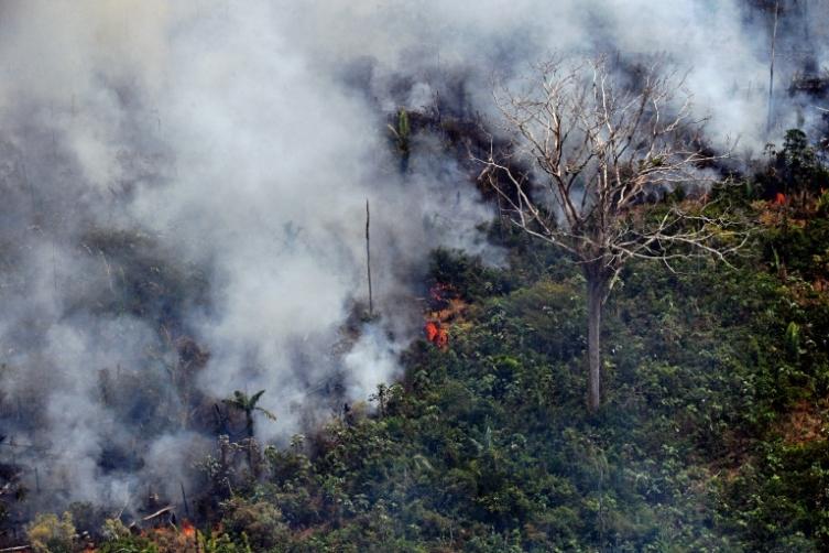 Стотици нови пожари ја пустошат Амазонија (ВИДЕО)