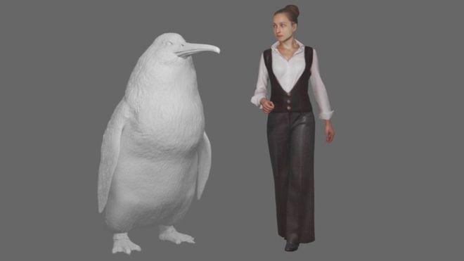 ФОТО: Пронајден фосил на џиновски пингвин во Нов Зеланд