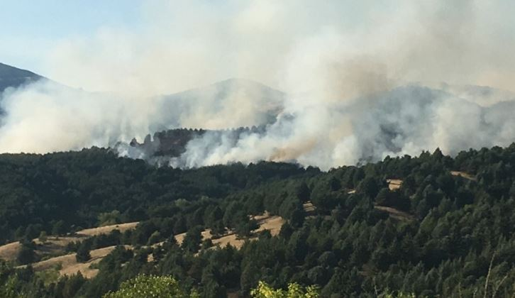 Изгаснат и локализиран шумскиот пожар што избувна на стар пат село Бели – Пониква