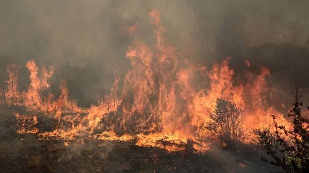 Несовесен земјоделец предизвика пожар во Општина Карбинци