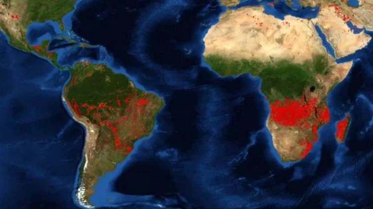 Во Африка беснеат три пати повеќе пожари отколку во Амазон: Еве зошто за нив никој не зборува!